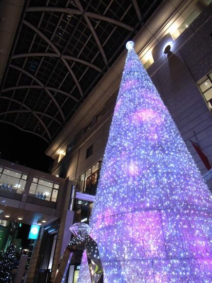 071214d_tree