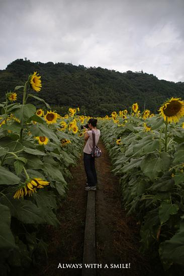 100922flower